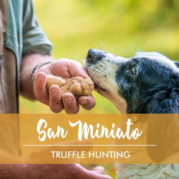 Truffle Hunting in San Miniato Tuscany