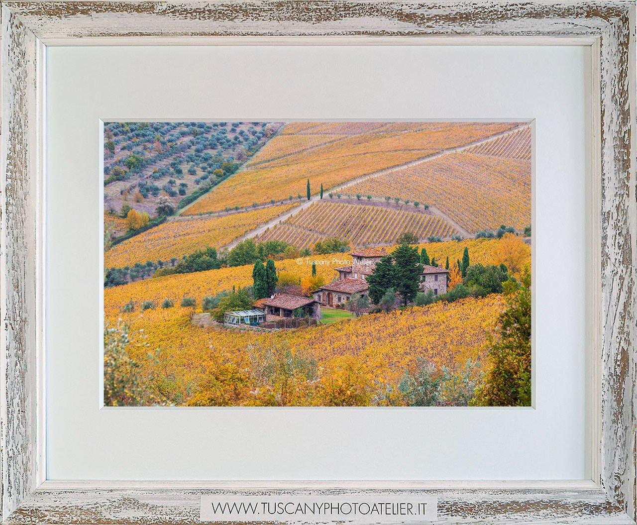 Stampa Fine Art paesaggio della Toscana - Chianti